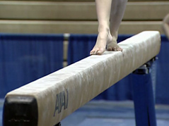 gymnastics meet \ gymnasts \