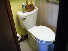 water rebate program toilet flush conserve