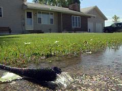 estelline flooding water pump drain