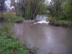 rapid creek flash flooding rising water rainfall
