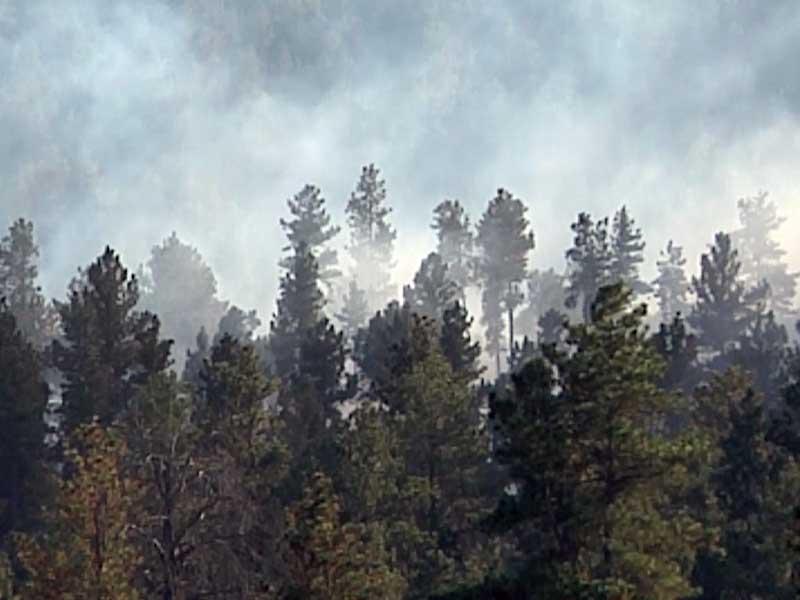fire danger black hills smoke wildfire prescribed fire custer state park