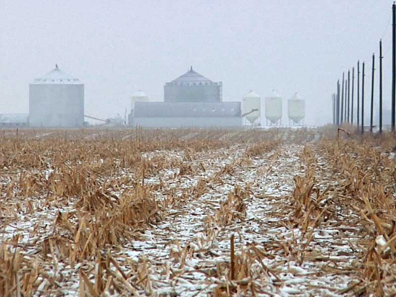 crops get dusting of snow farmers welcome moisture agriculture spink county brentford