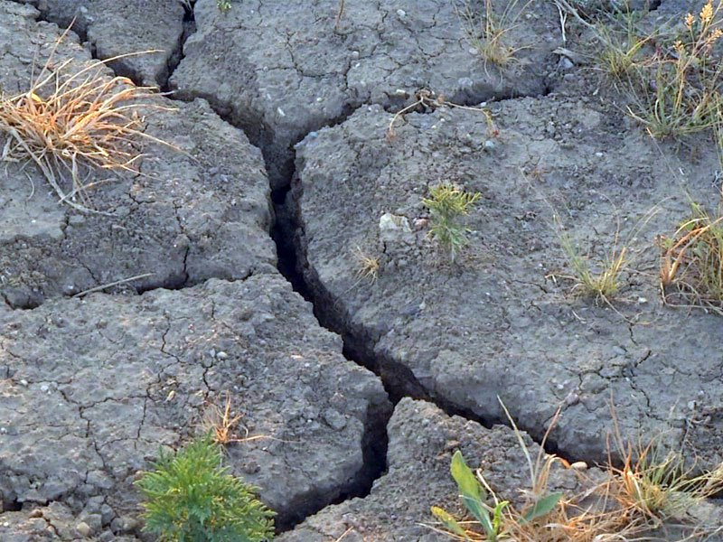 dry ground cracked ground farm land