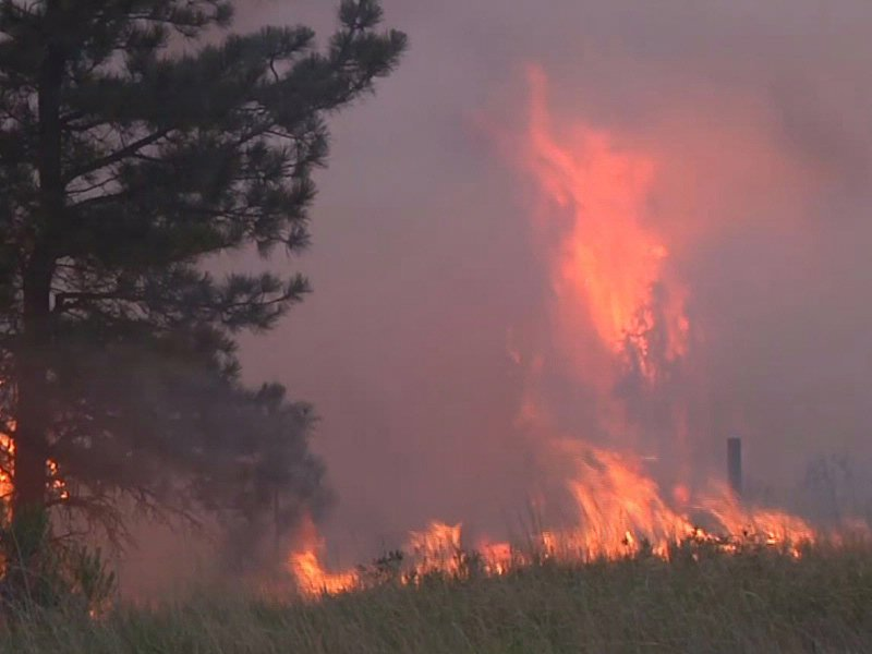 wildland fires black hills wildfires dakota fire from july