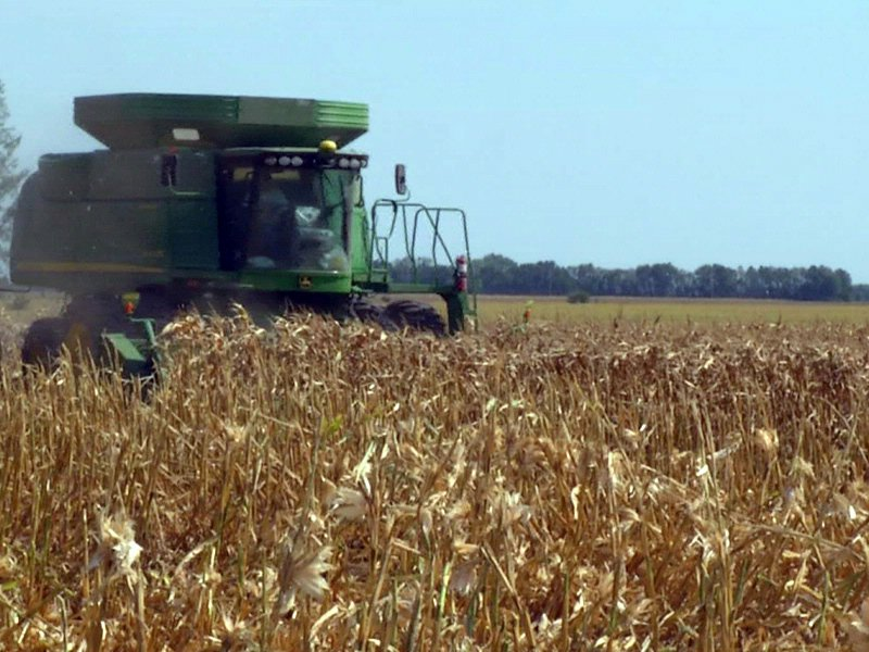 early harvest 2012 corn combine