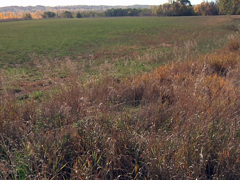 hunting fire danger field drought dry grass