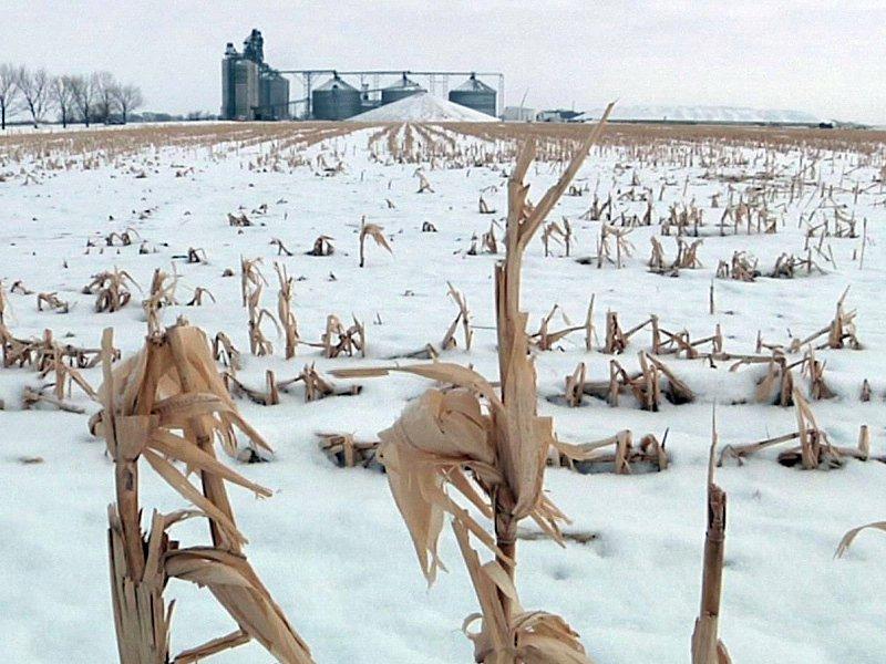 farm bill conde farming winter agriculture markets field crops farmers