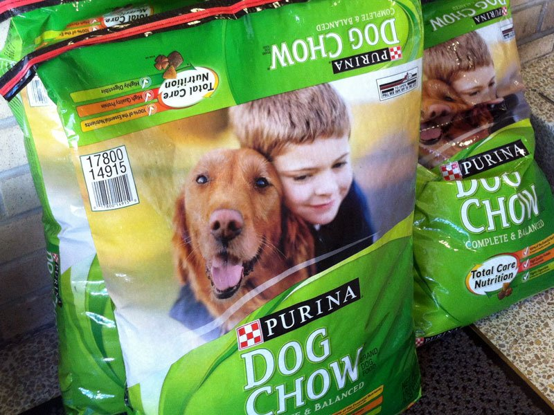 When To Change From Puppy Chow To Dog Food
