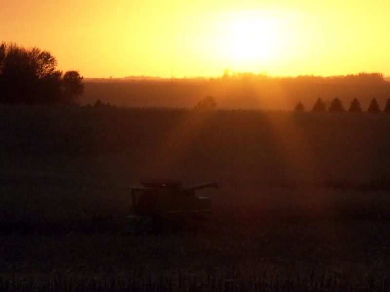 harvest crops late in season