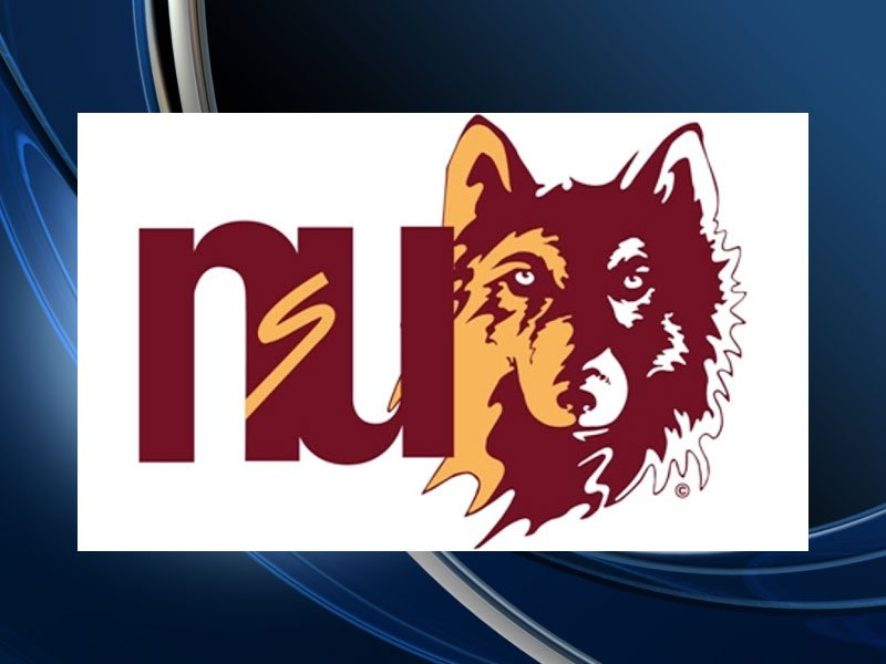 northern state university logo generic nsu wolves
