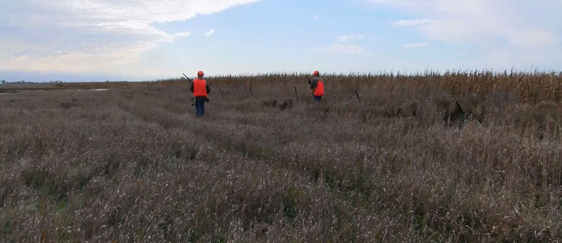 Pheasant numbers low at the start of season opener for South dakota game fish and parks fishing reports