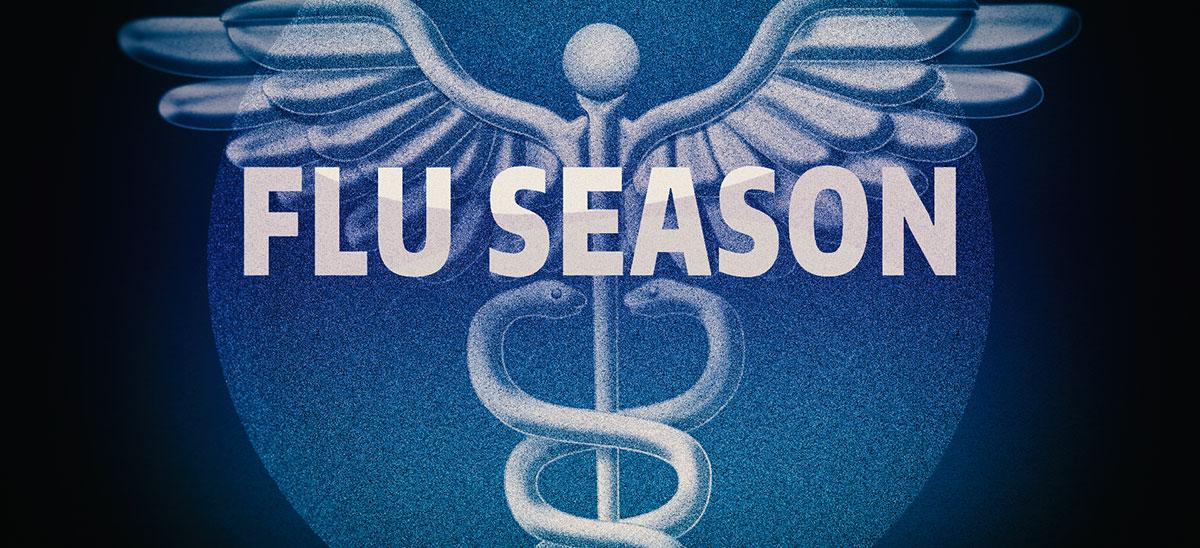 Influenza Season Flu Season