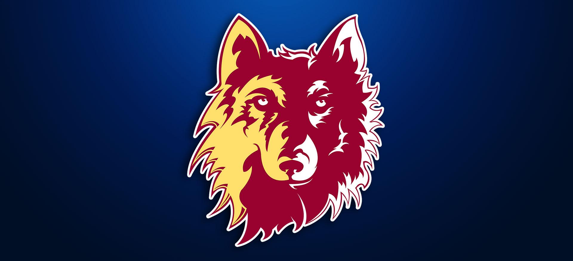 NSU Northern State University Wolves NSU Wolves