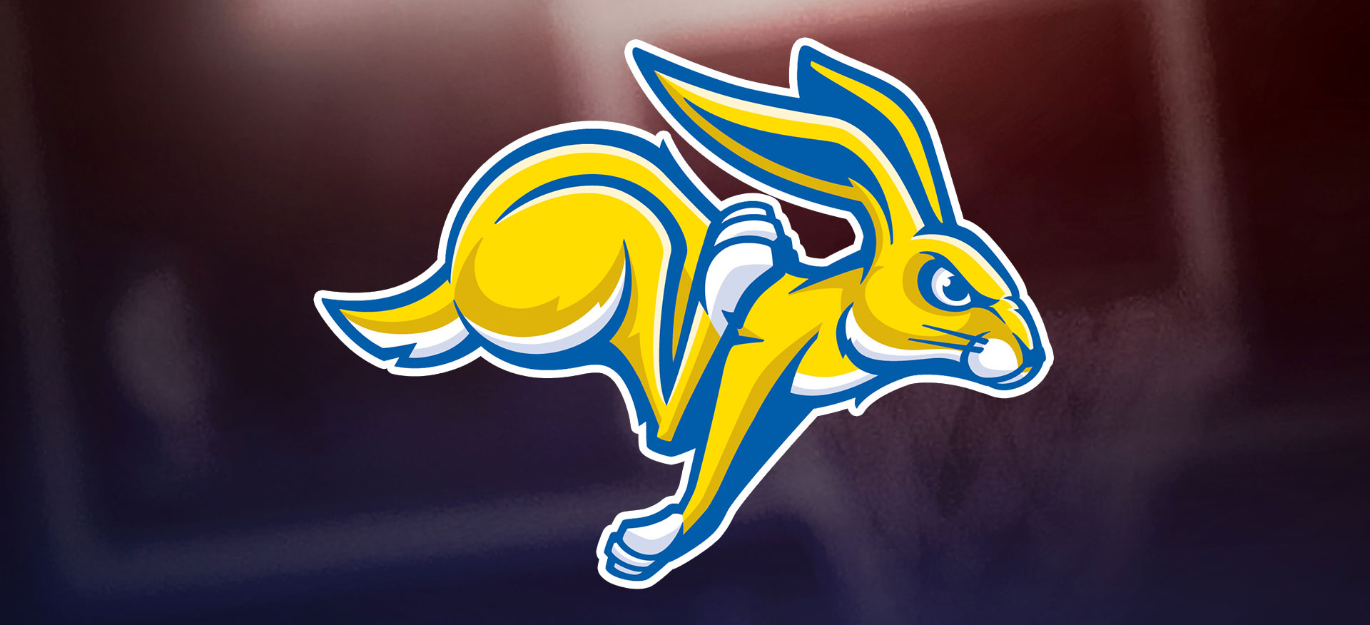 SDSU South Dakota State University Jackrabbits SDSU Jackrabbits SDSU Jacks