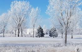 Winter wonderland at The Bluffs golf course