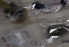 Drug paraphernalia found