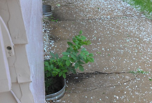 Hail at 33rd and Prairie