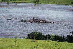 Beaver Creek