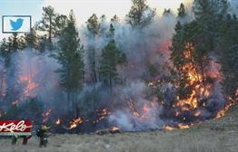 Firefighters To Battle Flames With High Winds In Black Hills