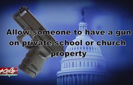 South Dakota Lawmakers On Gun Control
