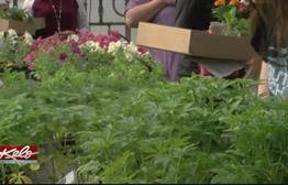 Southeast Tech Hosting Annual Plant Sale