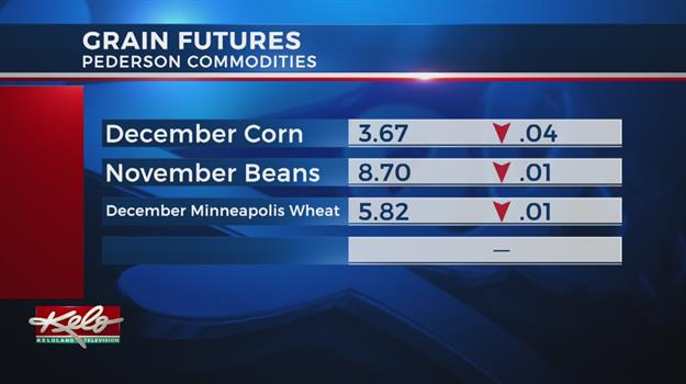 Tuesday, November 13 Ag Markets