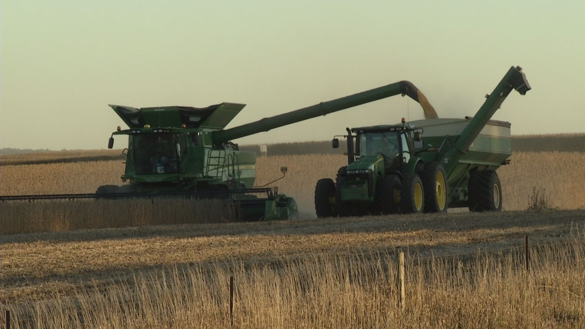 Fall Weather Autumn Weather Harvest Crops Soybeans Combine Fields Farming Farms